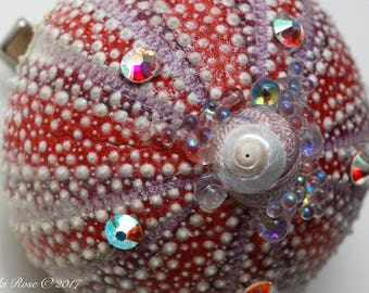 Colourful Urchin Hair Clip