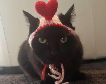Be my Valentine! Love heart cat hat.