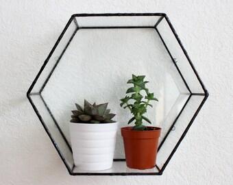 Varro Hexagon Glass Wall Display Shelf
