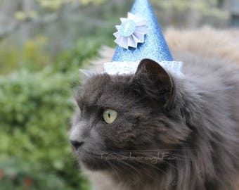 Birthday Cat Hat - Celebration Pet Hat