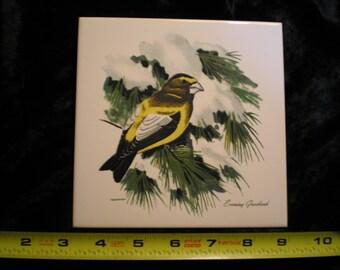 Vintage 1970s Ceramic Bird Tile - Evening Grosbeak   Can be sold Individually