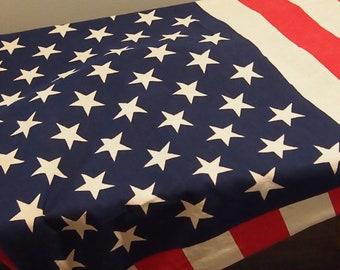 antique vintage Americana 50 star American Flag Patriotic