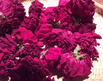 Dry Whole Red Peony Flowers with Long or Short Stems, Organically Grown, Naturally Dried