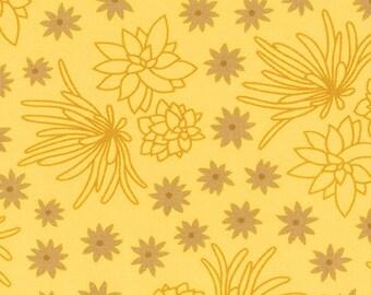 Terrarium (17285-368) Grellow Succulents by Elizabeth Hartman