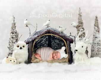 Digital background digital backdrop newborn christmas winter #27