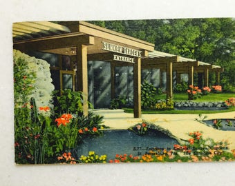 Vintage Postcard St Petersburg Fl Sunken Gardens 1954 Sunshine City