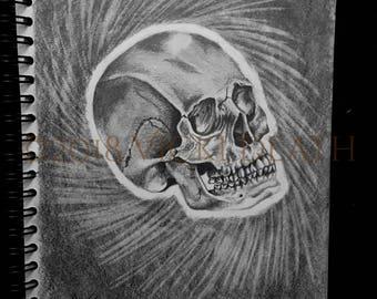 Skull Study Original Drawing Art