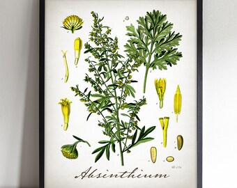 Absinthium - Printable Art - Instant Download