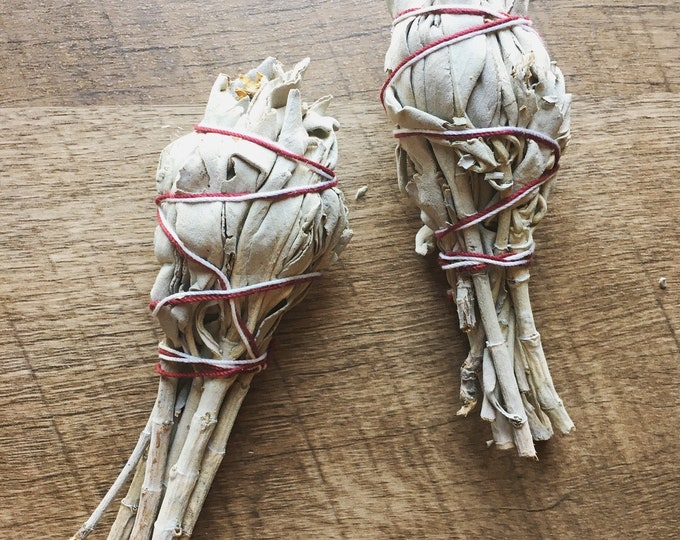 Mini White Sage Smudging Stick