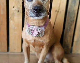 Dog flower collar, dusky pink flower, dog wedding attire, dog wedding bandana, dog flower girl, Dog rose collar, Mauve wedding, dog outfit
