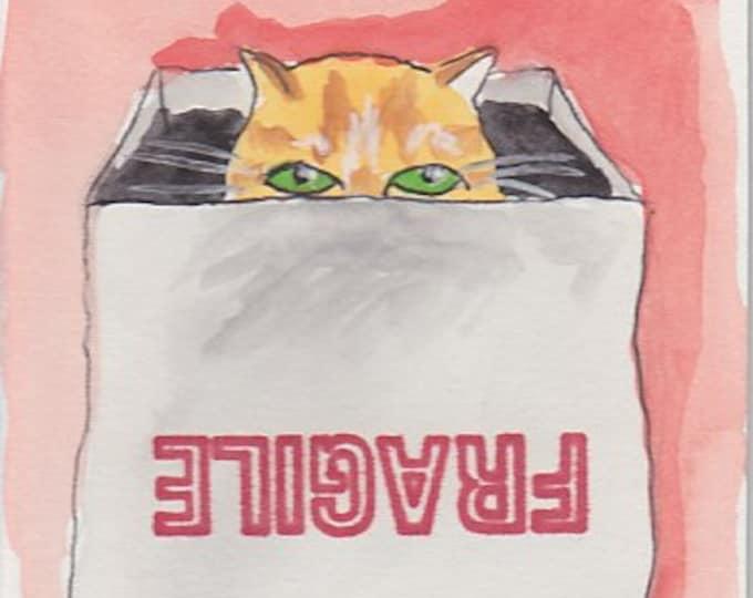 fragile cat in box notecard