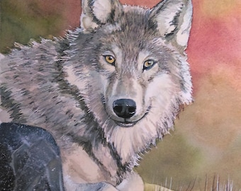 Original Watercolor Painting of a Watchful Grey Wolf