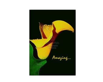 Greeting Card Yellow Calla Lily Inspirational Half-Fold Photo by Melsart21 Photography Creations