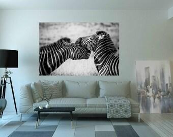 Zebra Fotografie BlackandWhite/MetalPrint/WoodPrint/Art/Painting/WoodPrint/Poster/XXLCanvas/Canvas/StreetArt/Afrika/SouthAfrika/MetalPrint