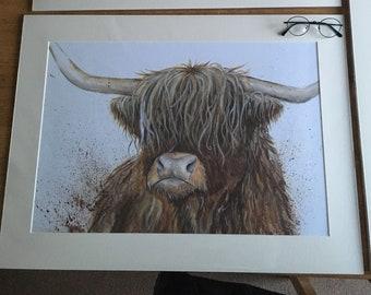 Highland cow mounted print- Hamish