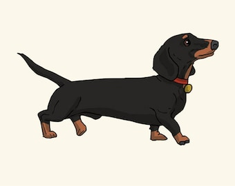 Dachshund Greetings card: Blank