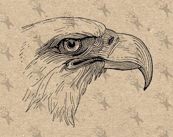 Vintage image Head Eagle Instant Download Digital printable Black and White clipart graphic decoupage burlap transfer prints etc HQ300dpi