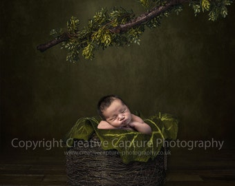 3 Newborn Digital backdrops / backgrounds / nest / branch