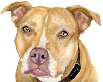 Custom pet portrait, watercolor paintings