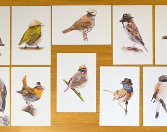 Set of postcards Birds in hats - Stationery