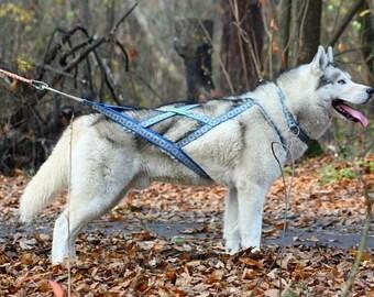 X-Back Harness_dog sledding harness_sledding collar_dog harness_dog accessories_dog harness pattern_siberian husky_harness_husky_sled dog