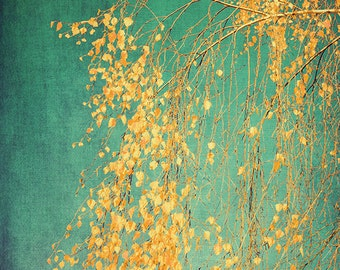 Tree photography, yellow leaves, large tree print, warm fall colors, emerald green, woodlands, fine art print, rustic home decor, wall decor