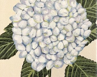 Hydrangea painting, Original Brenda Calvert, 6x6 canvas, flower art