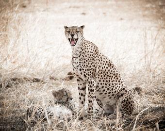 "Photo Print: ""Protective Mother"" - Female Cheetah with Cub, Tarangire National Park, Tanzania"