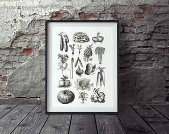 Poster vintage vegetable, picture kitchen, poster kitchen