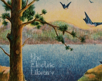 Peaceful Lake Digital Download: A Calm and Quiet View of a Pine Tree, Birds and a Lake