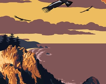 Big Sur, California - Condors (Art Prints available in multiple sizes)