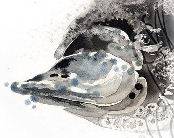 "Martinefa's Original watercolor and Ink Ornithorynque ""Platypus"""