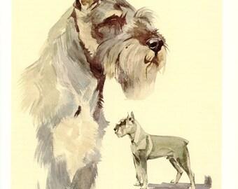 Schnauzer poster 1975 Vintage dog poster Dog print Dog art dog gift Schnauzer art gift for dog owner Schnauzer Dog painting