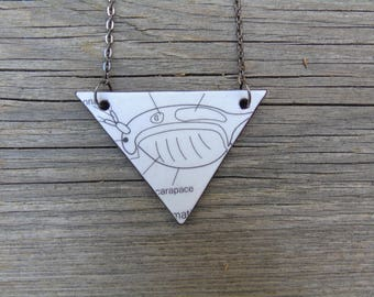 Biology necklace, leather - Daphnia
