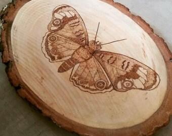 Wood burned butterfly