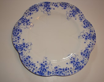"Shelley England DAINTY BLUE 8 3/4"" Plate ~ Luncheon"