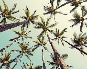 SALE, Tropical Decor, Palm Trees, Green, Retro Inspired, Palm Tree Wall Art, California, Apartment Decor, Small Spaces, 8x10
