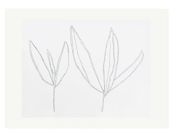 Plant drawing screenprint, large, minimal, modern monochrome botanical on gorgeous printmaking paper by Emma Lawrenson