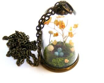 Terrarium necklace, birds nest pendant, gift for her, moss bottle, nature pendantl, gift from Ireland miniature terrarium flower jewelry