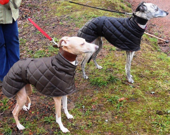 Greyhound,Whippet,sighthound waterproof and fleece lined long neck coats