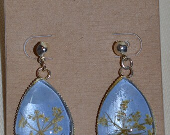 Queen Anne's Lace / Nature Inspired Jewelry /  Gift for Woman / Mother Gift/ Pressed flowers/ Pressed Flower Earrings