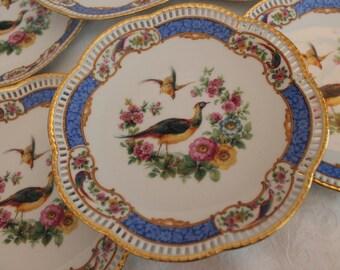 "Set of 6 Gorgeous Antique Schumann 7.75"" Plates with Beautiful Birds, Blue Reticulated Rim - Victorian, Arzburg"