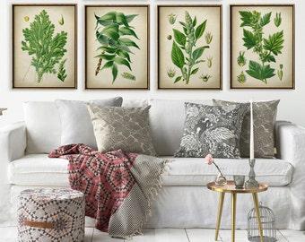 BOTANICAL Print SET of 4 Green Plants Prints, Flower Illustration, Herbs Painting, Vintage Botanical Art, Antique Flowers