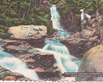 Crawford Notch, White Mountains, New Hampshire, Beecher's Cascade - Vintage Postcard - Postcard - Unused (A9)