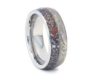Titanium Ring, Dinosaur Bone and Meteorite Band