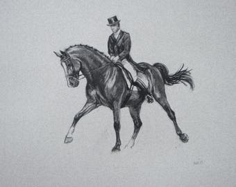 SALE Original equine art horse art energy and movement dressage charcoal movement art drawing 'Stride' by H Irvine