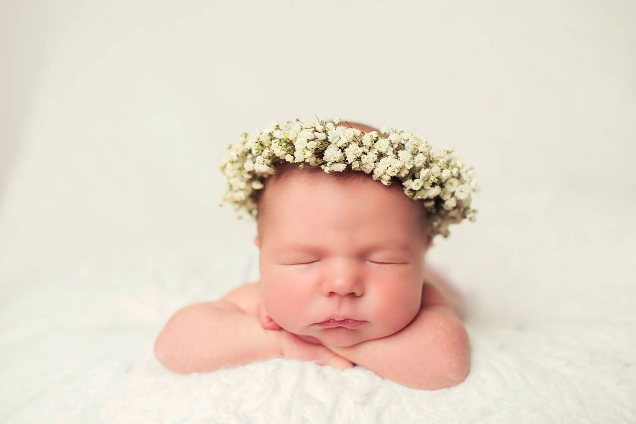 Babies breath flower crown made with real fresh babys breath babies breath flower crown made with real fresh babys breath flowers flower girl dry baby breath floral halo rustic crown best seller izmirmasajfo
