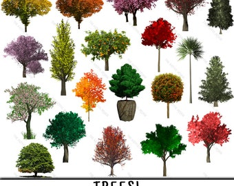 Tree Clipart, Tree Clip Art, Clipart Tree, Clip Art Tree, Tree PNG, PNG Tree, Trees Clipart, Trees Clip Art, Clipart Trees, Clip Art Trees