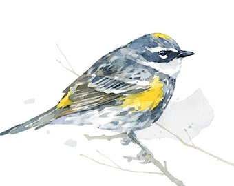 Warbler Art Print, Bird watercolor, bird lover gift, Yellow-rumped Warbler painting 5x7