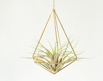 Air plant holder himmeli decahedron 01, modern hanging planter, plant hanger, air plant geometric planter, airplant display, home gift